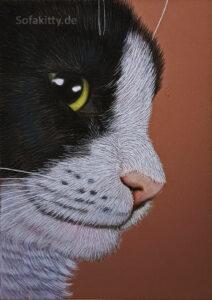 Kater Pastell Portrait