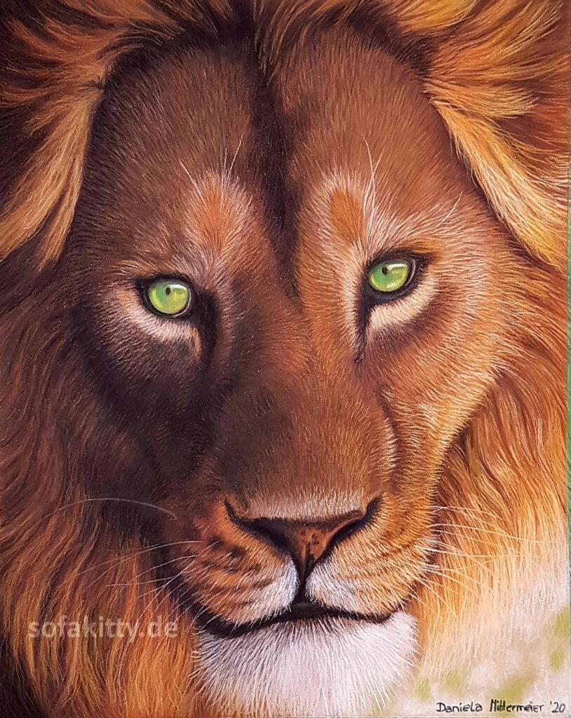 Wildtier Portrait eines Löwen in Pastell von Sofakitty